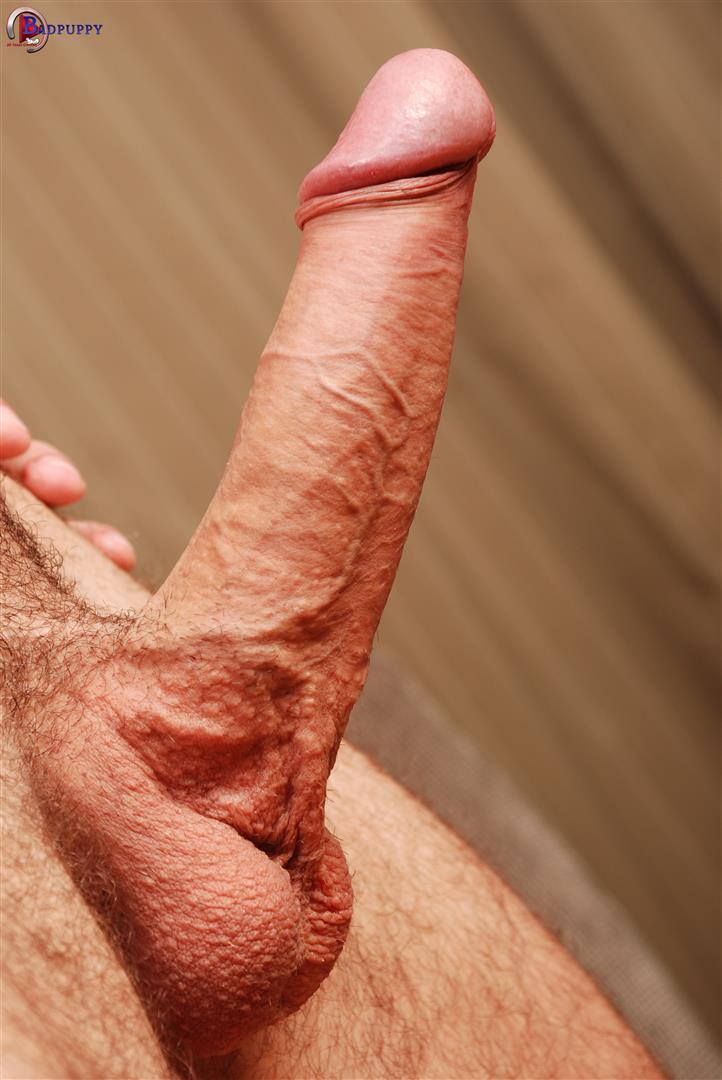 Big cock jerking porn